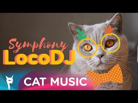 LocoDJ - Symphony Video