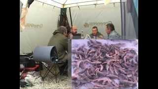 Володарского района астраханской области рыбалка