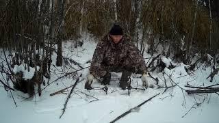 Ловля бобров зимой на проходной капкан