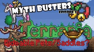 """RIDEABLE PET MOUNTS"" XBOX TERRARIA?!?! 