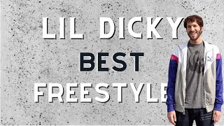 Lil Dicky Freestyle Compilation (Best Freestyles)