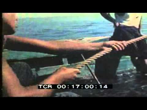 Alghero - 1955 - Pesca del corallo