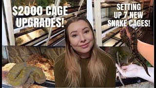 Redoing My Entire Reptile Room! $2000+ In Upgrades! | Vlogmas Day 16