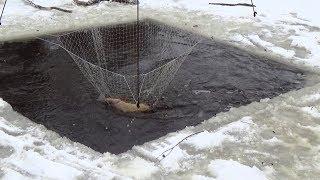 Ловля рыбы на паук зимой