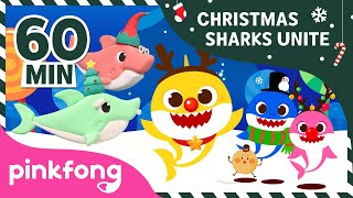 Christmas Sharks and more | +Compilation | Baby Shark Medley | Pinkfong Songs for Children