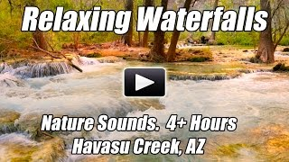 Relaxing Forest Creek Waterfall Nature Sounds Relax Study Meditation Sleep Sound of Water Relaxation