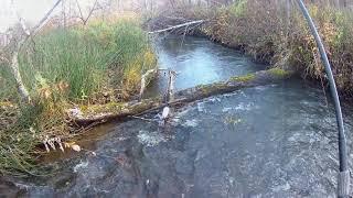 Про рыбалку на малых реках россии