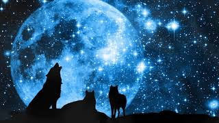 "Grandmother Wolf Spirit  ""Calling the Moon"" Conjuring/Manifestation Meditation"