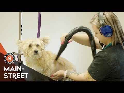 'Shampooches Dog Grooming' Sneak Peek | Small Business Revolution - Main Street: S3E4