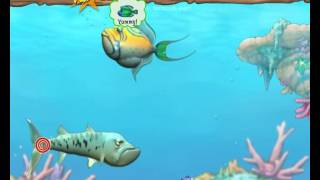 Feeding Frenzy 2 walkthrough full gameplay no commentary