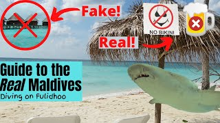 The Maldives you know ARE A LIE! Diving on a REAL local island (Fulidhoo)