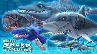 videó Hungry Shark Evolution