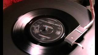The Animals - I'm Going To Change The World - 1965 45rpm