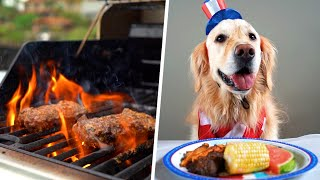 DOG FRIENDLY COOKOUT! (Fourth of July - Super Cooper Sunday #255)