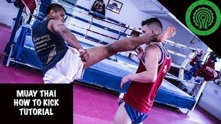 Muay Thai How to Kick Tutorial