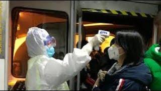 Wirus dzien 5, Sprawdzam stan metra. Podworkowe koty zniknely. – Relacja z Chin