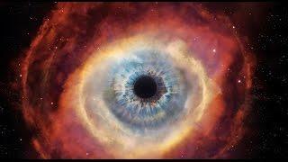 Los sentidos del Cosmos - #AbrilVideosMil #23