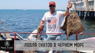 Ловля катрана в черном море