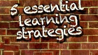 How To Become a Peak Learner or a Straight-A Student (5 essential learning strategies)