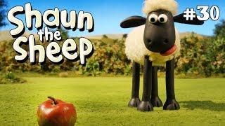 Buah-buahan dan kacang-kacangan - Shaun the Sheep [Fruit and Nuts]