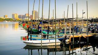 台南旅行ガイド | エクスペディア