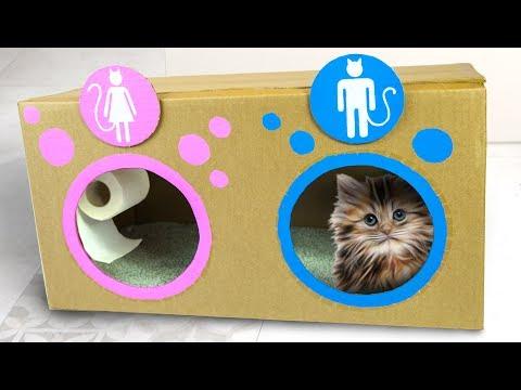 Katzen-Dixieklo - Schnell und einfach gebaut