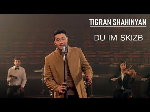 Tigran Shahinyan - Du im skizb