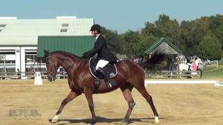 Jennifer Burk & Fresca Texas Rose Fall Horse Trials 2016