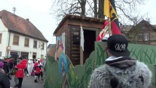 preview picture of video 'Fasnachtsumzug Hagenbach Kreis Germersheim Germany 17.2.2015 T15'