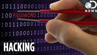Top 5 Hacking Software