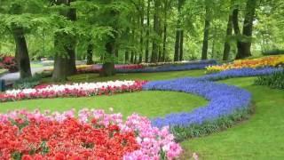 ♥Michel Pépé  - Les Jardins du Monde♥(Relaxing, soothing music)♥