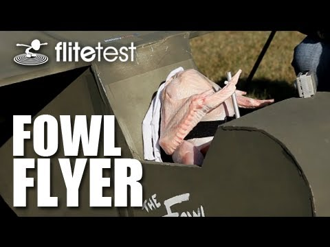 flite-test--fowl-flyer--project