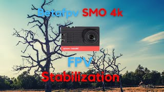 Insta360 Smo4k FPV and an old dead tree | BetaFpv Freestyle fpv cinematic footage