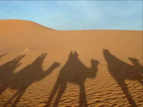 Orha Ba'Midbar - Caravan in Desert