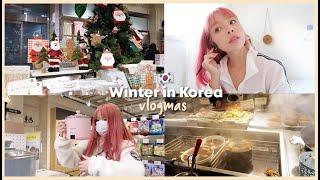WINTER IN KOREA ❄️️ VLOGMAS (1)   Erna Limdaugh