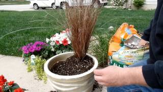 Container Gardening Idea   Fun With Flowers
