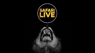 safariLIVE - Sunset Safari - March 22, 2018