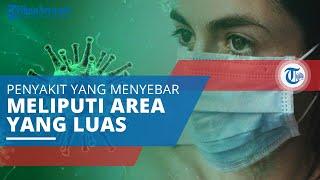 Pandemi, Penyakit Menular yang Menyebar secara Cepat dan Global Meliputi Area Geografi yang Luas