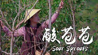 Enjoy the Spring Specialties - Sour Sprouts