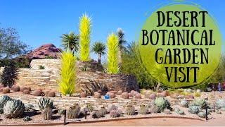 Desert Botanical Garden Visit