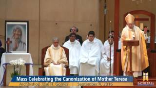 St. Mother Teresa: Our Model Of Holiness [Homily]