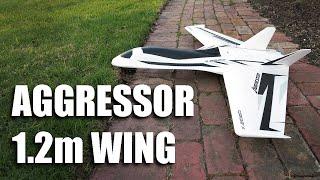 Aggressor 1.2m Swept Forward Wing - Overview