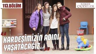 Songül Ertürk Kız Yetiştirme Yurdu! - Kırgın Çiçekler 113.Bölüm (Final)