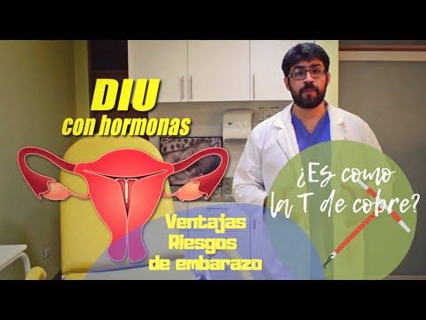 Download gratuito di video di sesso in gravidanza