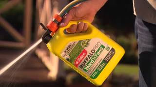 How to control broadleaf weeds in buffalo and most other lawns with 'Garden Guru' Trevor Cochrane