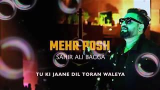 Meher Posh OST By Sahir Ali Bagga With Lyrics - YouTube