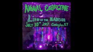 Animal Collective Live at The Madison Theater 07-30-2017 Covington, KY
