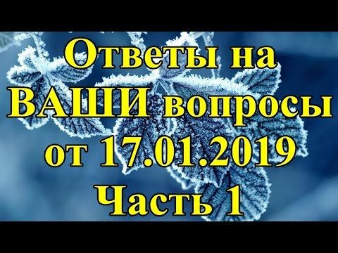 Ответы на ВАШИ вопросы от 17.01.2019. Часть 1.