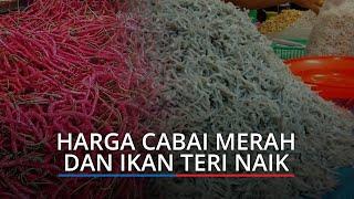 Harga Kebutuhan Pokok di Pasar Raya Padang Per Selasa, Cek Cabai Merah dan Ikan Teri