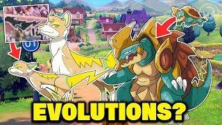 Drednaw  - (Pokémon) - Pokemon Sword and Pokemon Shield New Pokemon Concept Evolutions for Yamper,Drednaw & More!?